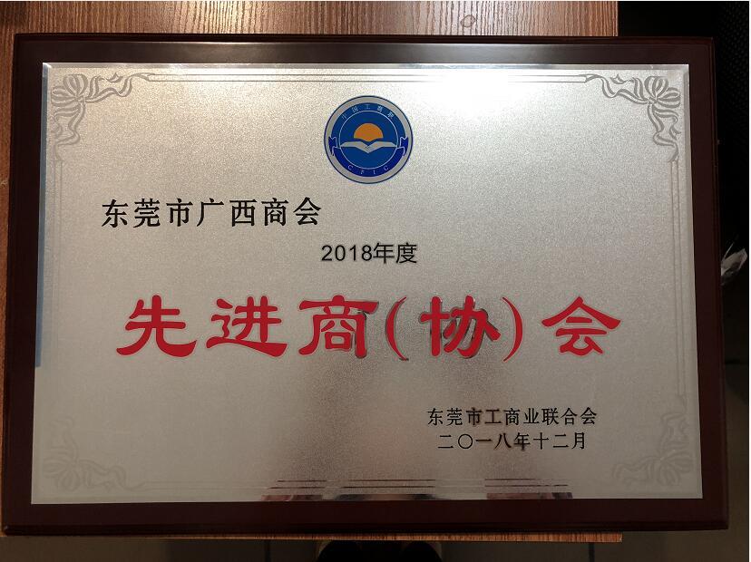 2018年度先进商协会